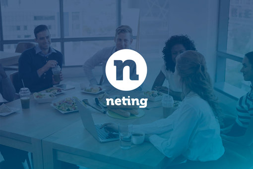 NETING LOGO